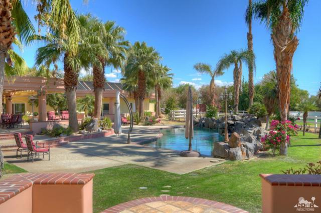 50180 Vista Montana Road, La Quinta, CA 92253 (MLS #218028540) :: Team Wasserman
