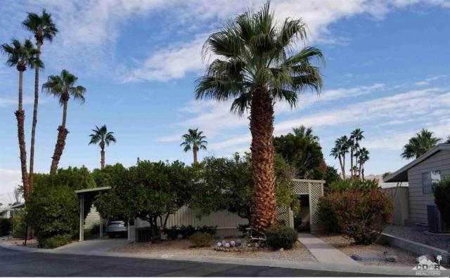49305 State Hwy 74 #179, Palm Desert, CA 92260 (MLS #218028544) :: Team Wasserman
