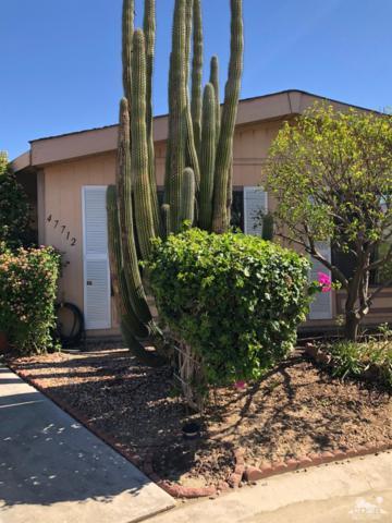 47712 Calle Fiesta, Indio, CA 92201 (MLS #218028638) :: Brad Schmett Real Estate Group