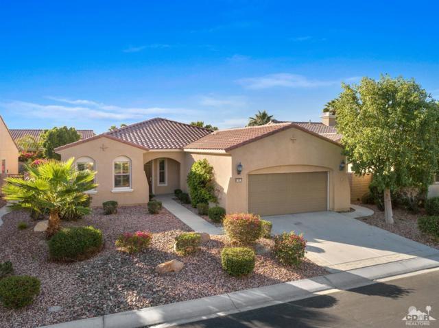 81623 Avenida Sombra, Indio, CA 92203 (MLS #218028744) :: Brad Schmett Real Estate Group