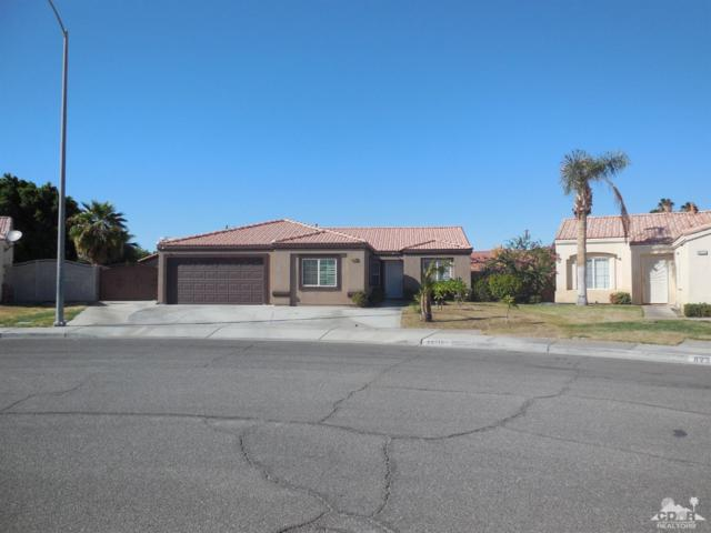 82310 Painted Canyon Avenue, Indio, CA 92201 (MLS #218029302) :: Brad Schmett Real Estate Group
