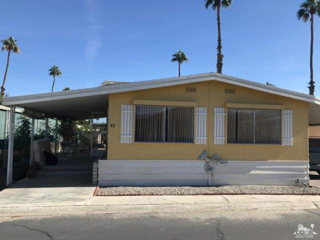 51555 Monroe Street #43, Indio, CA 92201 (MLS #218032614) :: Brad Schmett Real Estate Group