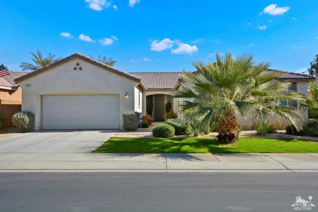 41246 Corte Alto Collina, Indio, CA 92203 (MLS #218032656) :: Brad Schmett Real Estate Group