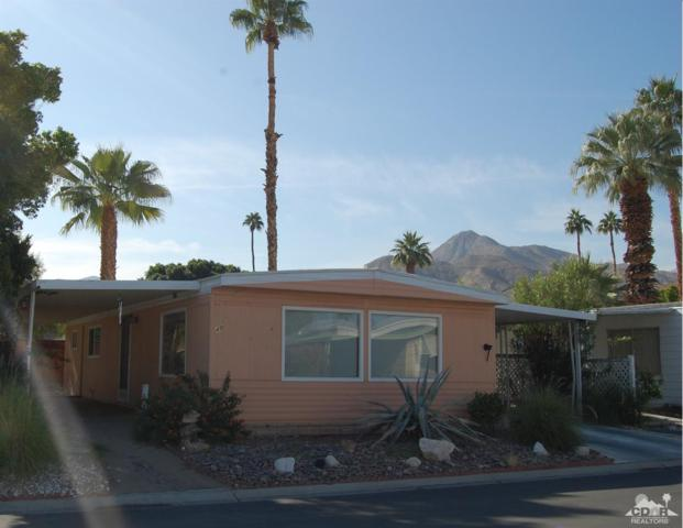 48 Poquito Drive, Palm Springs, CA 92264 (MLS #218033624) :: Deirdre Coit and Associates