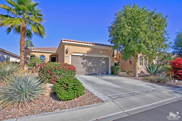 81938 Camino Cantos, Indio, CA 92203 (MLS #218034024) :: Brad Schmett Real Estate Group