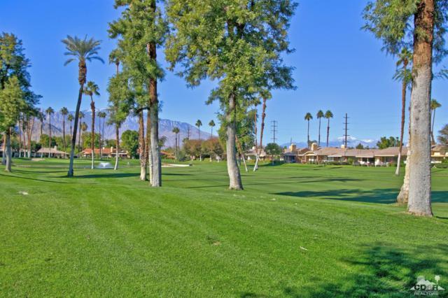 234 La Paz Way, Palm Desert, CA 92260 (MLS #218034768) :: Hacienda Group Inc
