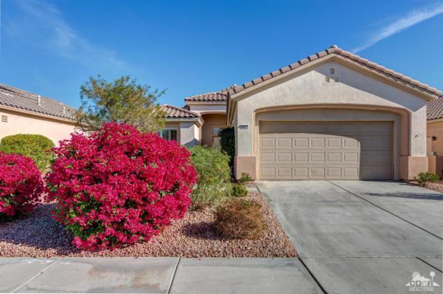 36594 Royal Sage Court, Palm Desert, CA 92211 (MLS #218034884) :: The Jelmberg Team