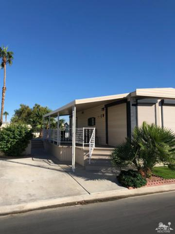 81620 Avenue 49 #241, Indio, CA 92201 (MLS #218035076) :: Deirdre Coit and Associates