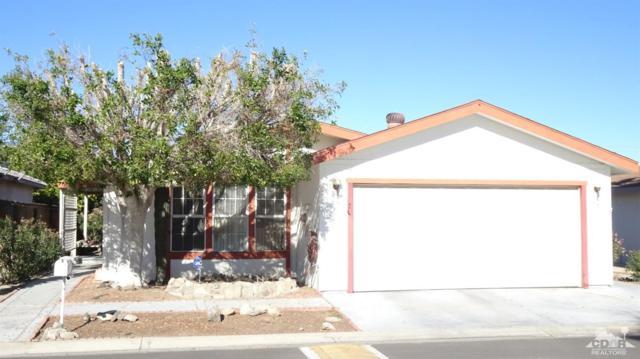 81641 Avenue 48 #32, Indio, CA 92201 (MLS #218035756) :: The Sandi Phillips Team