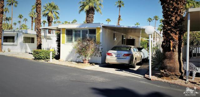 256 Wolf, Cathedral City, CA 92234 (MLS #218035936) :: The Jelmberg Team