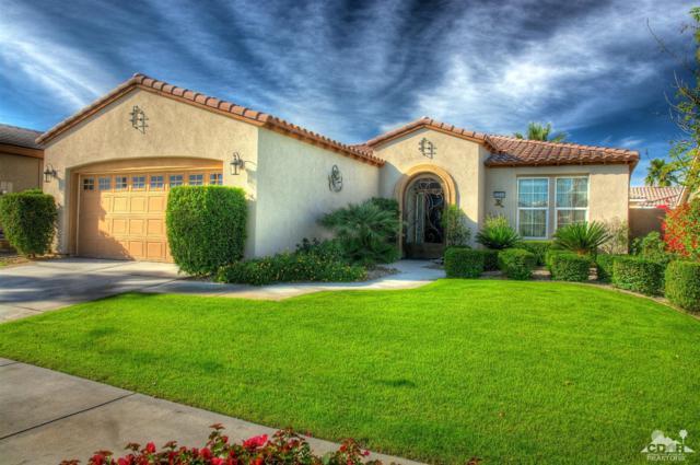 60245 Desert Rose Drive, La Quinta, CA 92253 (MLS #218036056) :: The Sandi Phillips Team