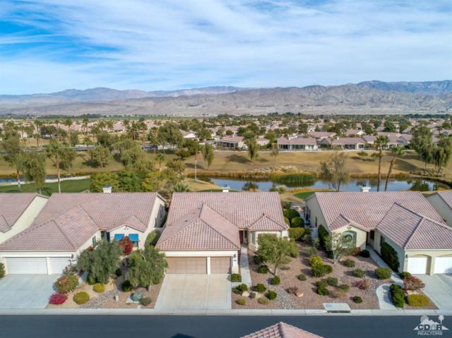 80306 Camino Santa Elise, Indio, CA 92203 (MLS #219001057) :: Brad Schmett Real Estate Group