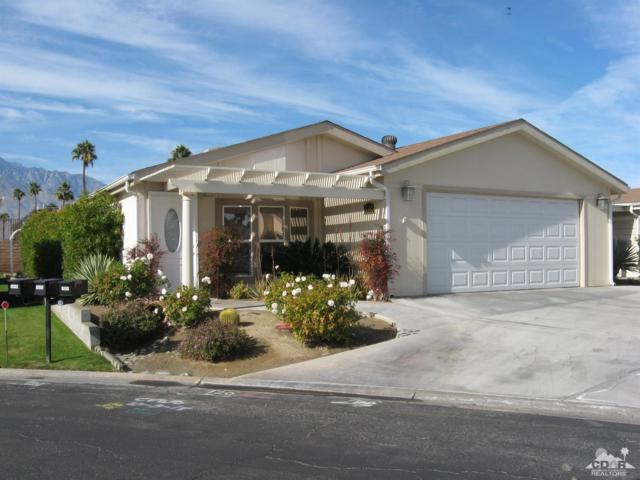 1302 Via Playa, Cathedral City, CA 92234 (MLS #219001215) :: The Jelmberg Team