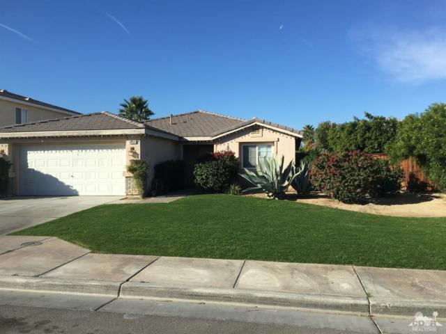 48695 El Castillo Road, Coachella, CA 92236 (MLS #219001423) :: Hacienda Group Inc