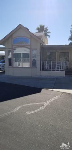 74711 Dillon Rd #183, Sky Valley, CA 92241 (MLS #219001539) :: The Jelmberg Team