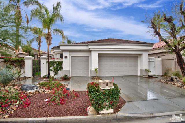 253 Desert Holly Drive, Palm Desert, CA 92211 (MLS #219001721) :: Brad Schmett Real Estate Group