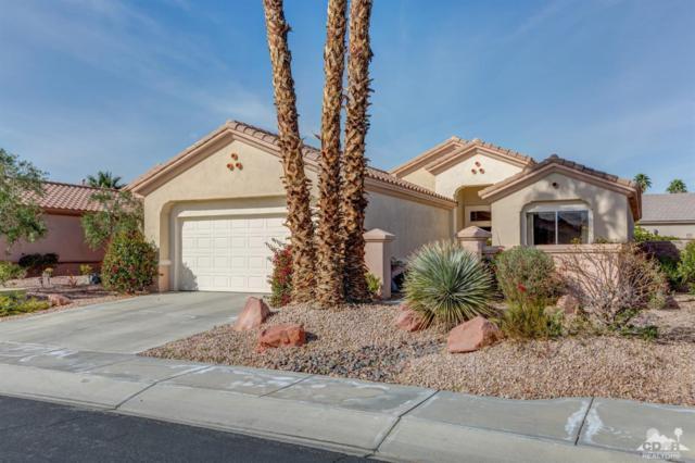78814 Palm Tree Avenue, Palm Desert, CA 92211 (MLS #219002763) :: Brad Schmett Real Estate Group
