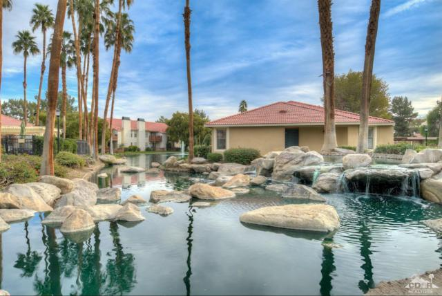 43376 Cook Street #142, Palm Desert, CA 92211 (MLS #219003275) :: Brad Schmett Real Estate Group