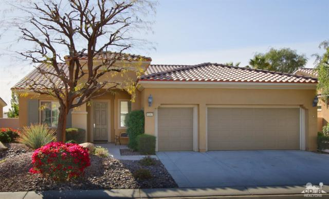 81663 Camino Vallecita, Indio, CA 92203 (MLS #219005253) :: The Jelmberg Team