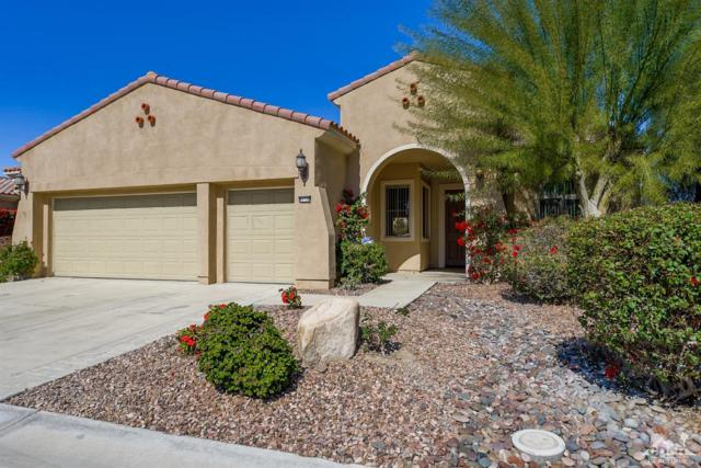 81120 Avenida Pamplona, Indio, CA 92203 (MLS #219005329) :: Brad Schmett Real Estate Group