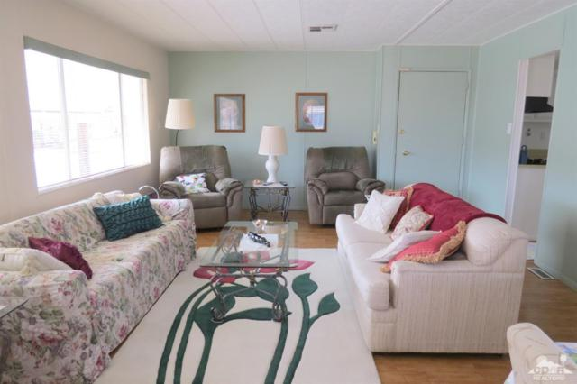 73390 Colonial Drive, Thousand Palms, CA 92276 (MLS #219005341) :: Brad Schmett Real Estate Group