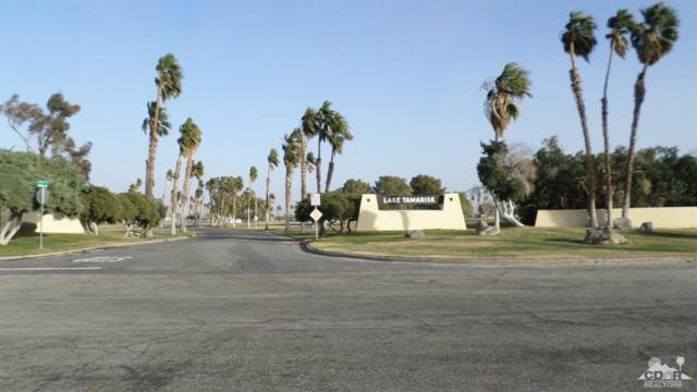 44141 Shadow Way, Desert Center, CA 92239 (MLS #219006807) :: Hacienda Group Inc