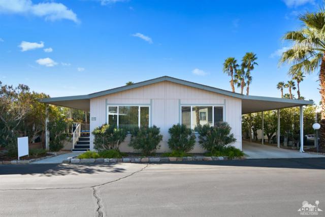 74711 Dillon Road #535, Desert Hot Springs, CA 92241 (MLS #219006955) :: Brad Schmett Real Estate Group