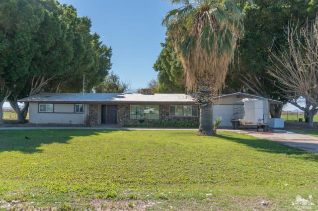 11301 W 14th Avenue, Blythe, CA 92225 (MLS #219006959) :: Deirdre Coit and Associates