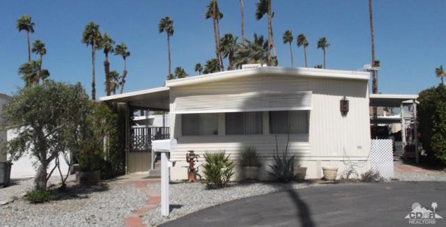 162 Coyote, Cathedral City, CA 92234 (MLS #219007451) :: Deirdre Coit and Associates