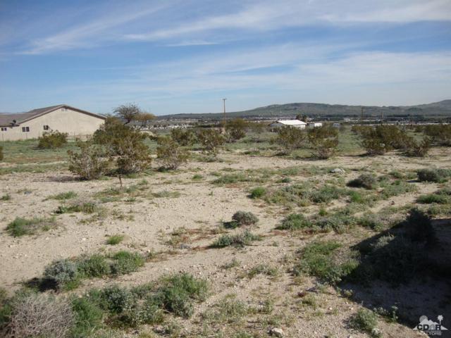 0 Herderson Road, Desert Hot Springs, CA 92240 (MLS #219008377) :: Brad Schmett Real Estate Group