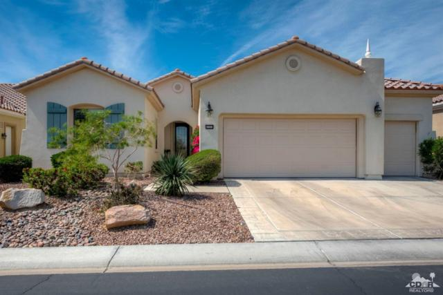 41553 Calle San Elijo, Indio, CA 92203 (MLS #219008531) :: The Jelmberg Team