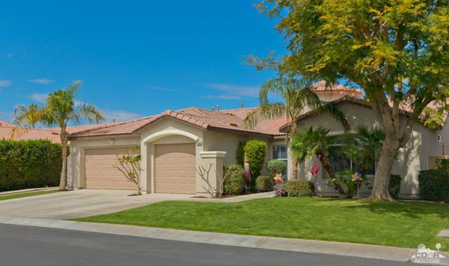 81300 Avenida Blanca, Indio, CA 92201 (MLS #219008653) :: The Jelmberg Team