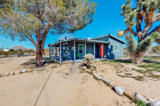 63776 Single Tree Road, Joshua Tree, CA 92252 (MLS #219008735) :: Brad Schmett Real Estate Group