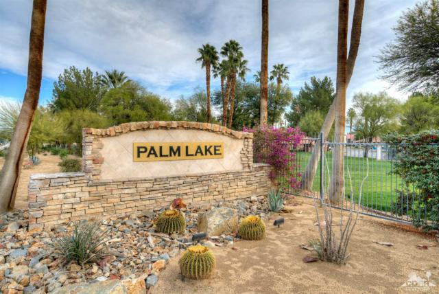 43376 Cook Street #34, Palm Desert, CA 92211 (MLS #219008769) :: The Jelmberg Team