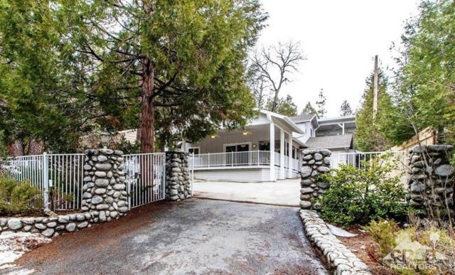 54159 S Circle Drive, Idyllwild, CA 92549 (MLS #219008835) :: Deirdre Coit and Associates