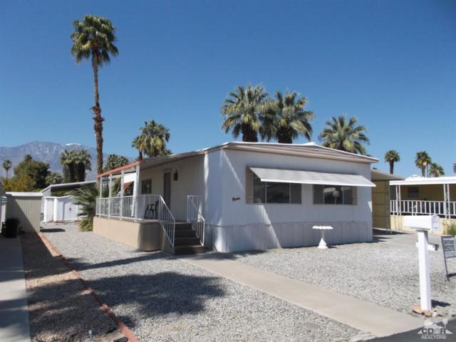 348 Sand Creek, Cathedral City, CA 92234 (MLS #219008997) :: Brad Schmett Real Estate Group