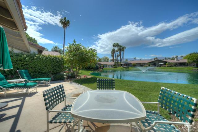 111 Deer Spring Way, Palm Desert, CA 92211 (MLS #219009161) :: The Jelmberg Team