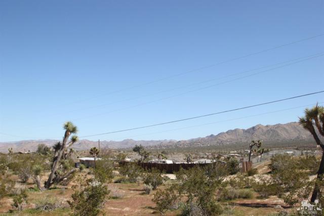 1-Acres Nelson & Linda Lee, Yucca Valley, CA 92284 (MLS #219009539) :: Hacienda Group Inc