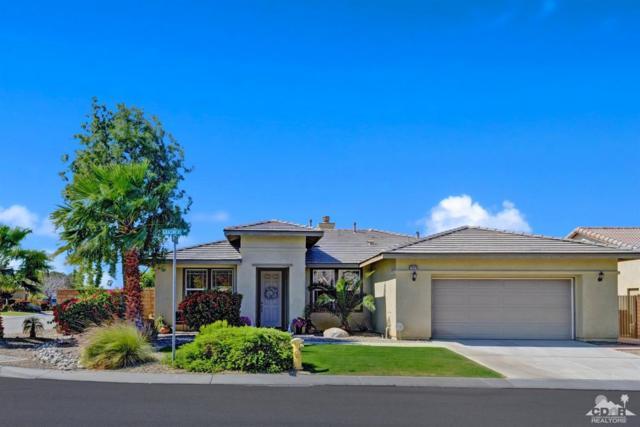 79975 Grasmere Avenue, Indio, CA 92203 (MLS #219009957) :: Brad Schmett Real Estate Group