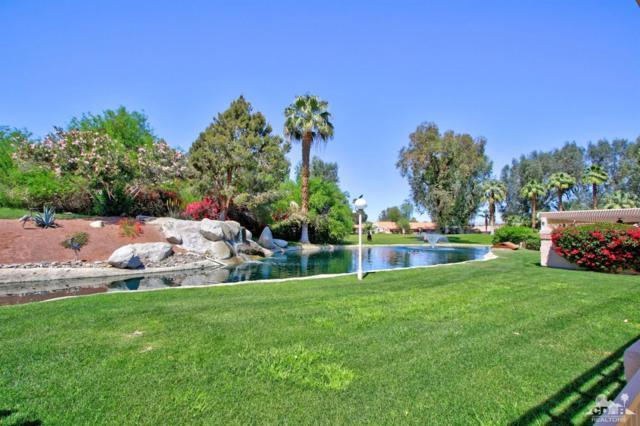 49265 Douglas Street, Indio, CA 92201 (MLS #219010031) :: Brad Schmett Real Estate Group