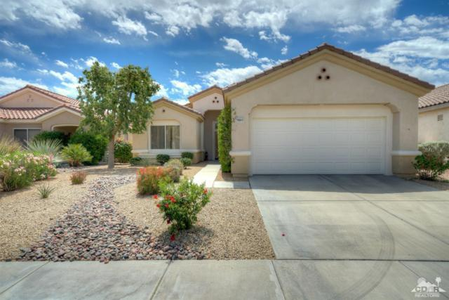 78853 Iron Bark Drive, Palm Desert, CA 92211 (MLS #219010469) :: The Jelmberg Team