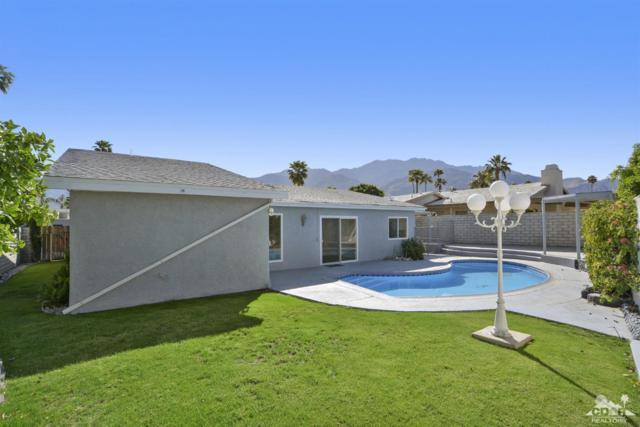 826 Arroyo Vista Drive, Palm Springs, CA 92264 (MLS #219010817) :: Deirdre Coit and Associates
