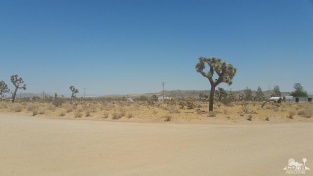 2-ac Ne Cor Surrey & Junipero, Yucca Valley, CA 92284 (MLS #219011849) :: Hacienda Group Inc