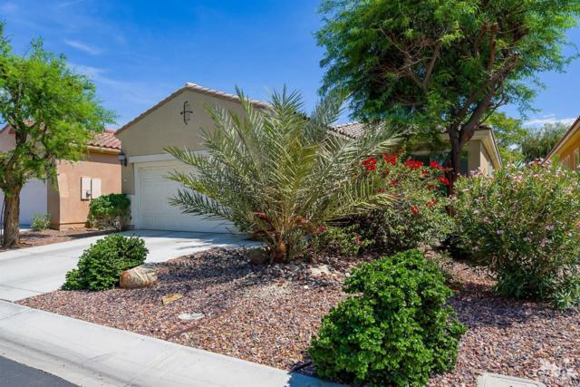 81649 Avenida De Baile, Indio, CA 92203 (MLS #219013575) :: The Jelmberg Team