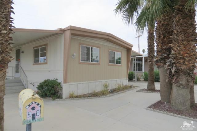 32381 Saint Andrews Drive, Thousand Palms, CA 92276 (MLS #219014191) :: Brad Schmett Real Estate Group