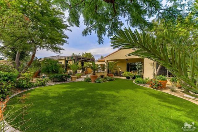 81301 Corte Compras, Indio, CA 92203 (MLS #219014201) :: Brad Schmett Real Estate Group