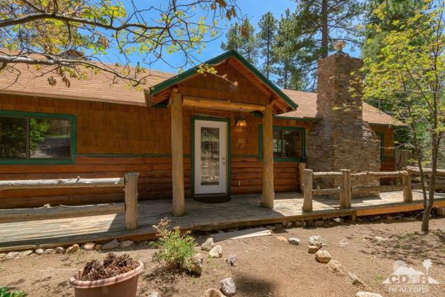 25370 Nestwa Trail, Idyllwild, CA 92549 (MLS #219014497) :: Bennion Deville Homes