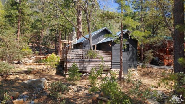 25250 Glen Road Road, Idyllwild, CA 92549 (MLS #219014681) :: The John Jay Group - Bennion Deville Homes