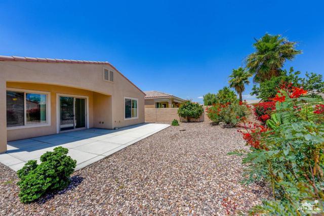 81630 Avenida De Baile, Indio, CA 92203 (MLS #219015199) :: The John Jay Group - Bennion Deville Homes