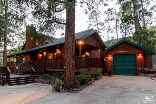 24967 Fern Valley Road, Idyllwild, CA 92549 (MLS #219016465) :: The John Jay Group - Bennion Deville Homes